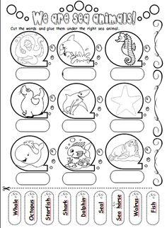 Ocean animals worksheet
