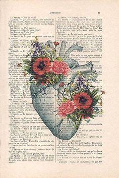 Arte Com Grey's Anatomy, Flower Anatomy, Book Art, Human Anatomy Art, Heart Anatomy Drawing, Love Heart Drawing, Heart Drawings, Kunst Poster, Medical Art
