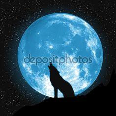 La luna vista desde la tierra. Lobo aullante, elementos de este vector fue proporcionada por la Nasa — Ilustración de stock #75199419