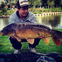 Old warrior mirror carp