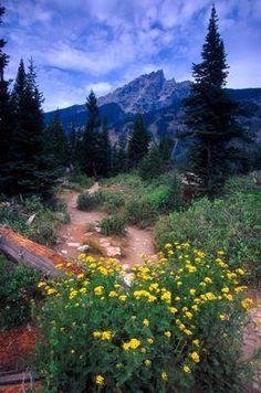 Grand Teton National Park - Wyoming hiking trails