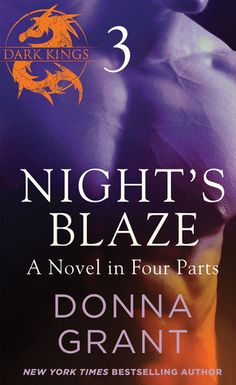 Night's Blaze: Part 3  (Dark Kings 5.3) Donna Grant  4 1/2 STARS