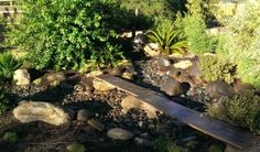 Dry River Garden | Yume - Japanese Gardens of Tucson: I've not been here, but someplace I definitely want to visit soon!