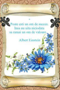 8 Martie, Albert Einstein, Words, Quotes, Blog, Google, Quotations, Blogging, Quote