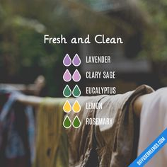 Fresh and Clean - Essential Oil Diffuser Blend
