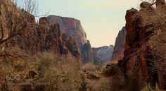 Zion National Park in Utah USA by BrianScrivner via http://ift.tt/2uqoneS