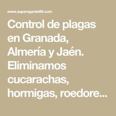 Control de plagas en Granada, Almería y Jaén. Eliminamos cucarachas, hormigas, roedores y otros. Particulares, Negocios y Empresas. Inspección gratis.