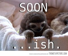 "Kelly.  Her answer about when she's getting up for school. - ""Soon…ish."""