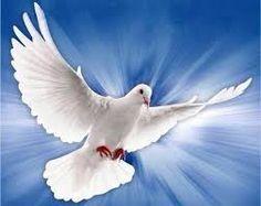 Resultado de imagen para paloma del espiritu santo