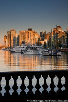 Coal Harbour and downtown Vancouver from Stanley Park, Vancouver, British Columbia, Canada. #Canada #travel #cities