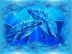 Dolphin Art - Dolphins Fan Art (9919705) - Fanpop