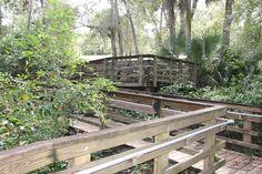 Take the wooden walkway through Wekiwa Springs State Park in Apopka, Florida.