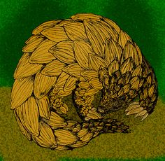 Test your pangolin knowledge! Want to learn more about pangolins? Check out this comprehensive list!