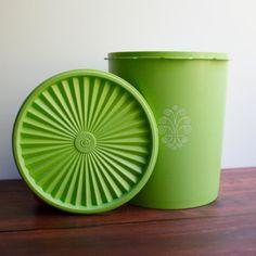 Vintage Tupperware...really?? Nice