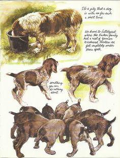Allemand Wirehaired Pointer par chien de Rien Poortvliet 1983 couleur d'impression