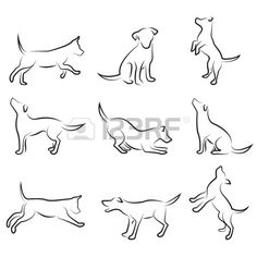 dog drawing set  Stock Vector