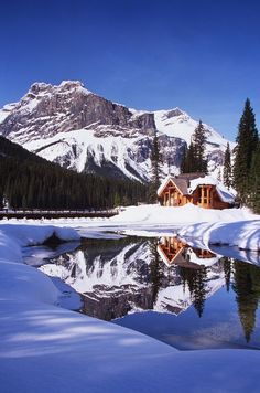 Emerald Lake Lodge Remotely located on the picturesque shores of Emerald Lake in Yoho National Park, with the breathtaking Canadian Rockies as a backdrop, the Emerald Lake Lodge offers visitors a. Yoho National Park, National Parks, Gaia, Emerald Lake, Nyc, Mountain Resort, Nature Pictures, Rocky Mountains, Beautiful Places