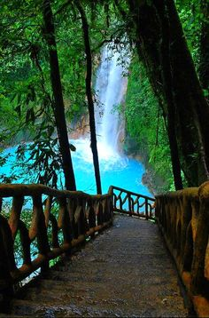 Enjoy blue water at Costa Rica ! Rio Celeste Waterfall with the blue waters, Costa Rica (reminds me of the jungle in Chiapas, Mexico) Places Around The World, The Places Youll Go, Places To See, Around The Worlds, Rio Celeste Costa Rica, Costa Rico, Puerto Rico, San Jose Costa Rica, Dream Vacations