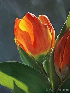 Tulpen No 9 von Gerd Pflumm