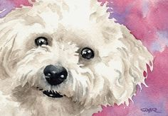 Chien BICHON frisé signé Art Print artiste DJ Rogers