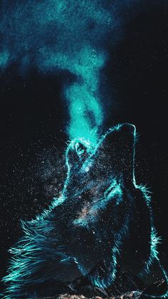 Wolf wallpaper by ManuelG4R - 0361 - Free on ZEDGE™