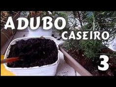 Adubo Caseiro Fácil 3 - para hortas de temperos e plantas Dica Mi Presentes na Cozinha - YouTube
