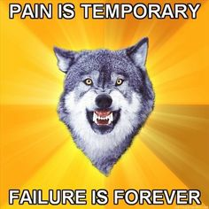 Courage-Wolf-Pain-is-temporary-Failure-is-forever.jpg (457×457)