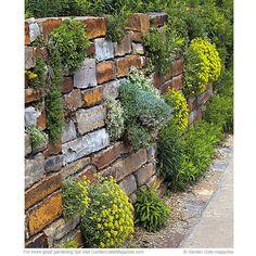 Transform a hardworking stone wall into a beautiful garden.