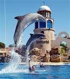 SeaWorld Orlando, Florida