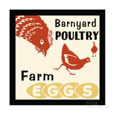 Barnyard Poultry-Farm Eggs Giclee Print