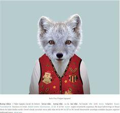 ARTIC FOX (PUP)