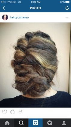 Braided updo from Instagram