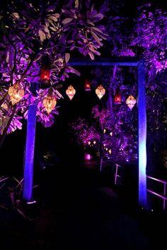 purple decor, purple themed decor, night decor, outdoor decor, hanging lanterns