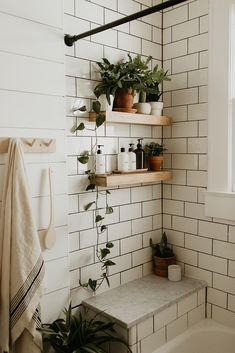Bathroom renovation, modern vintage bathroom, farm sink, black white brass, shiplap, house plants.