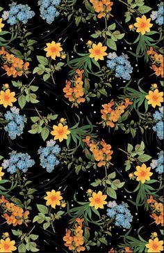 céu de flores W Estudio