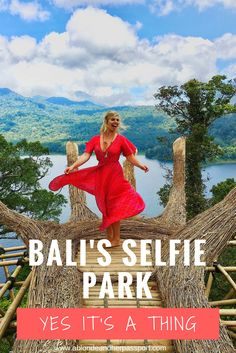 Welcome to Bali's Selfie Park! Get amazing photos of your travels at this hidden gem in North Bali