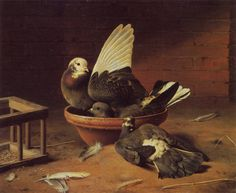 """""""Bathing Doves"""" - """"Kylpeviä Kyyhkysiä"""" (1862) by   Ferdinand von Wright (1822-1906) - Nuorin veli Ferdinand työskenteli seitsemän vuotta Wilhelmin apulaisena, hoiti kalastuksenvalvojan toimen viransijaisuutta ja maalasi samalla useita Skandinaviens fiskar -teoksen vesivärimalleista.Ferdinand oli veljeksistä ainoana saanut varsinaista taidekoulutusta."""