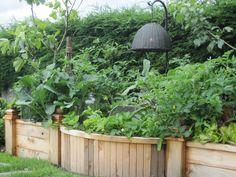 Raised Garden Bed - Monica Hart La Famiglia Design