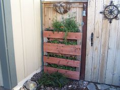 cant find a pallet for a pallet garden? Make One!