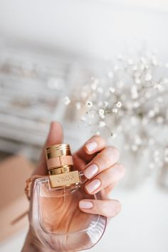 My New Perfume: Chloé Nomade - Stripes and Vibes - Chloe Nomad stripesnvibes , Chloe perfume, favorite scent, # - Perfume Ariana Grande, Perfume Scents, Perfume Bottles, Avon Products, Beauty Products, Parfum Victoria's Secret, Victoria Secret Perfume, Best Perfume, Perfume Collection