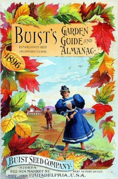 1896 Buist's Garden Vintage Flowers Seed Packet Catalogue Advertisement Poster | eBay