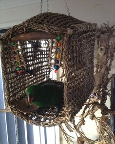 "For a safer net for our feathered friends. {""Seagrass cabana house"" - No, seagrass is not a traditional net that can catch claws. It actually chews into tiny bite sized pieces and is perfectly safe. Diy Parrot Toys, Diy Bird Toys, Parrot Stand, Bird Stand, Diy Bird Cage, Bird Cages, Bird Aviary, Bird Perch, African Grey Parrot"