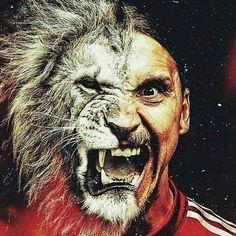 ZLATAN the lion