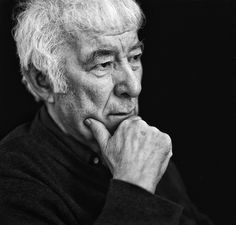 Another gift for you on #pocketpoem day: From the Republic of Conscience by Seamus Heaney https://pocket.co/x8owjp