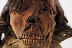 An ornately tattooed 1,600-year-old mummy unearthed in Peru could be a warrior queen of the violent Moche people.