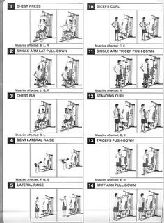 Weider Pro 6900 Exercise Chart Healthy Life