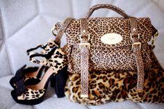 Cheetah amazingness xoxox