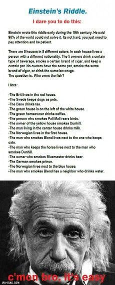 Einstein's riddle   The German owns the fish