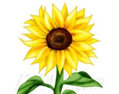 sunflower border clip art sunflowers clip art images sunflowers rh pinterest com sunflowers clipart border sunflowers clipart free