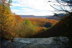 Lehigh River Gorge and Jim Thorpe from Glen Onoko Falls- Beautiful hike and view. My favorite to take with my Dad.